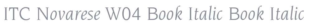 ITC Novarese W04 Book Italic