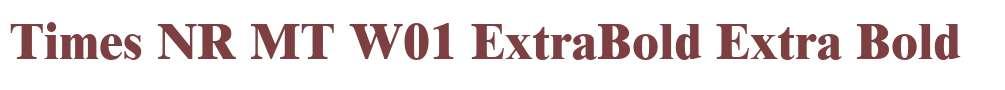 Times NR MT W01 ExtraBold