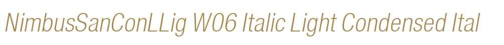NimbusSanConLLig W06 Italic