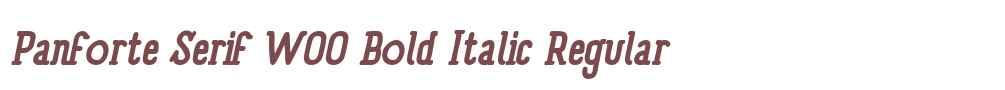 Panforte Serif W00 Bold Italic