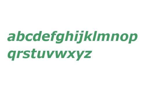 MS Reference Sans Serif Bold Italic