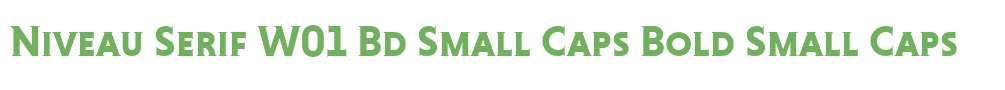 Niveau Serif W01 Bd Small Caps