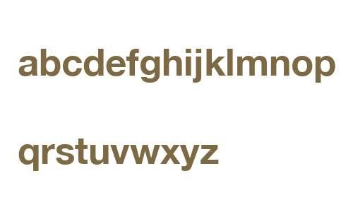 Helvetica Neue ME Bold