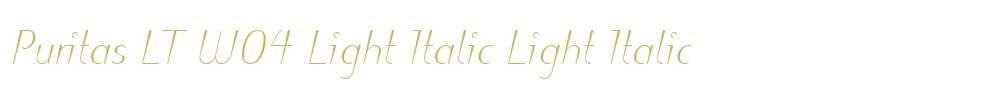 Puritas LT W04 Light Italic