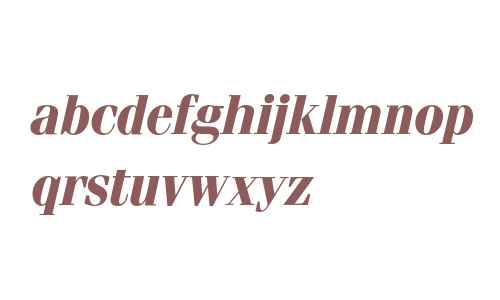Fenice* Bold Italic