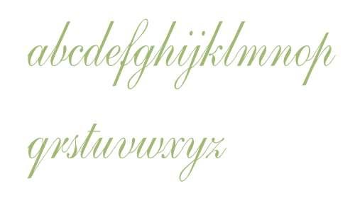 Shelley-AndanteScript Cn