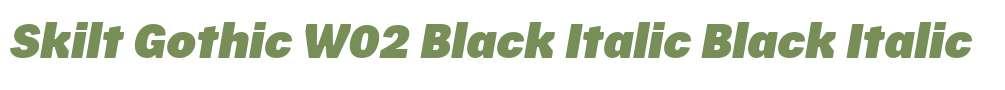 Skilt Gothic W02 Black Italic