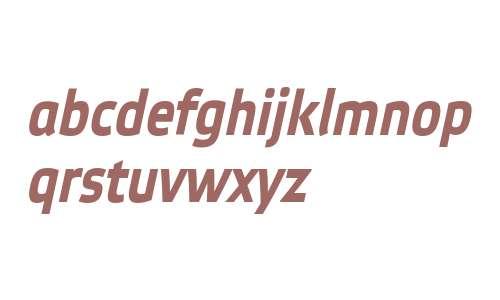 EtelkaNarrowTextPro-BoldItalic