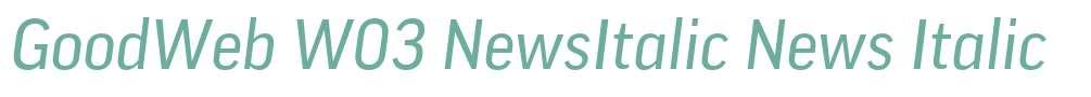 GoodWeb W03 NewsItalic