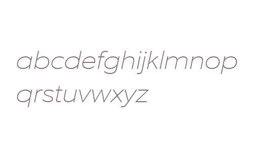 EquipExtended W03 Thin Italic