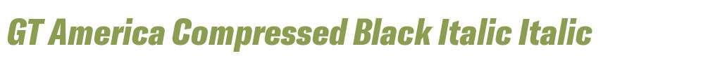 GT America Compressed Black Italic