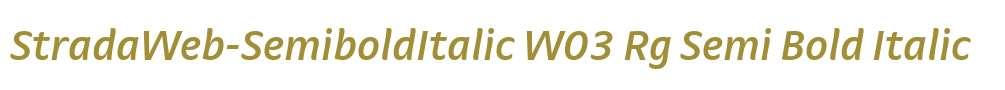 StradaWeb-SemiboldItalic W03 Rg