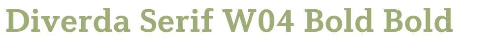 Diverda Serif W04 Bold