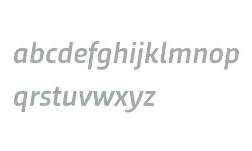 Trasandina W03 Medium Italic