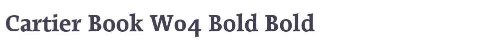 Cartier Book W04 Bold