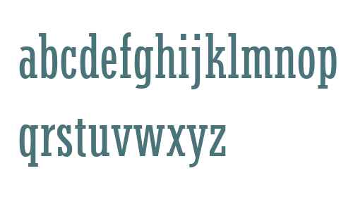 Stymie W04 Medium Condensed