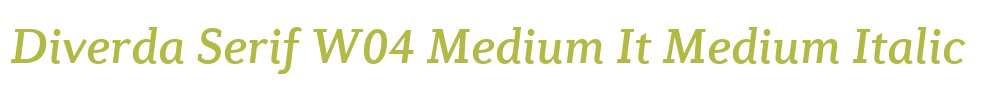 Diverda Serif W04 Medium It