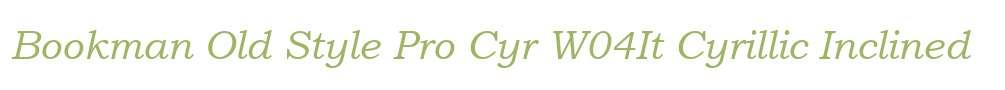 Bookman Old Style Pro Cyr W04It