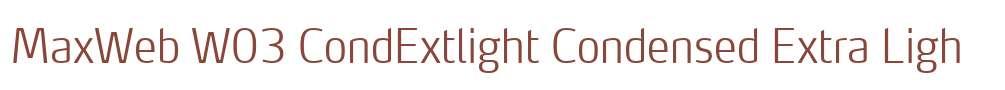 MaxWeb W03 CondExtlight