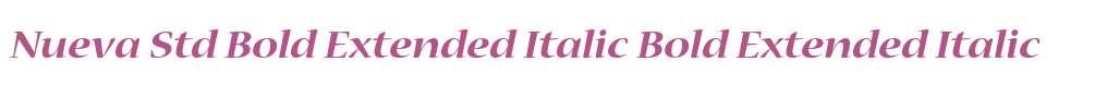 Nueva Std Bold Extended Italic