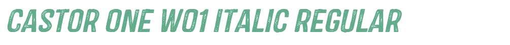 Castor One W01 Italic