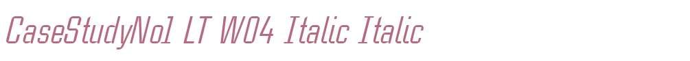 CaseStudyNo1 LT W04 Italic