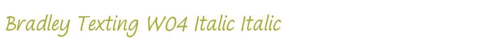 Bradley Texting W04 Italic