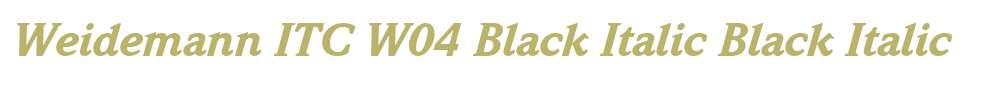 Weidemann ITC W04 Black Italic