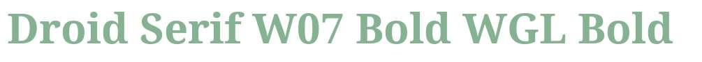 Droid Serif W07 Bold