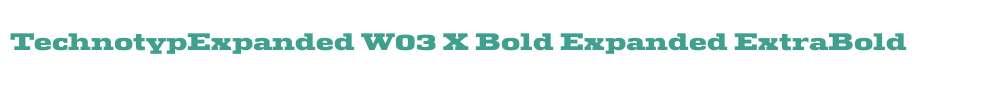 TechnotypExpanded W03 X Bold