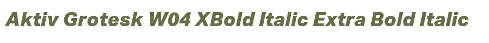 Aktiv Grotesk W04 XBold Italic