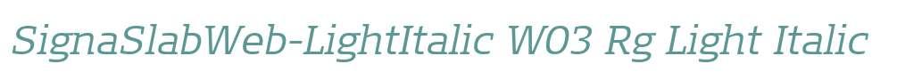 SignaSlabWeb-LightItalic W03 Rg