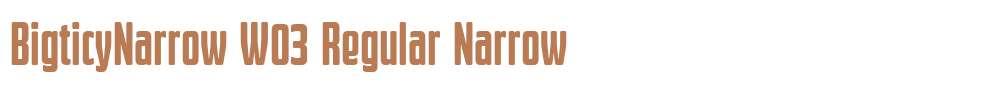 BigticyNarrow W03 Regular