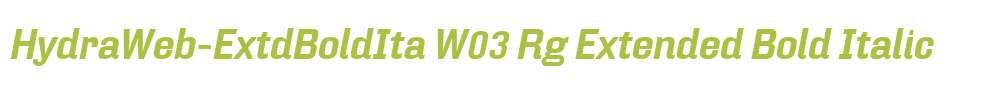 HydraWeb-ExtdBoldIta W03 Rg