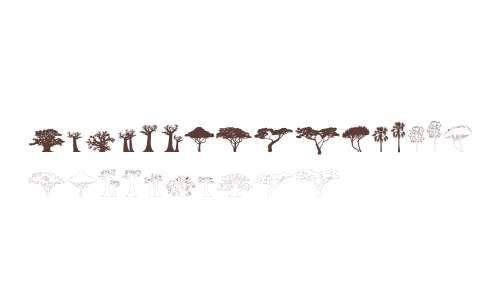 Trees of Africa W95 Regular