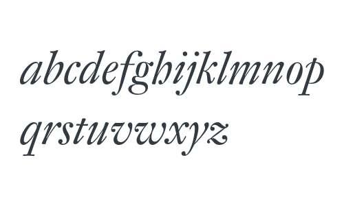 DTLFleischmannD-Italic