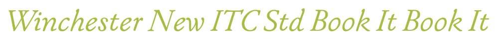 Winchester New ITC Std Book It