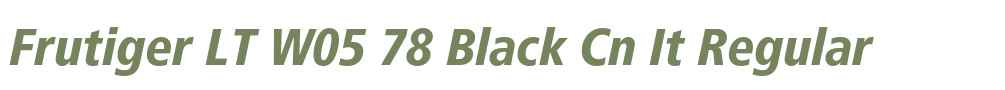 Frutiger LT W05 78 Black Cn It