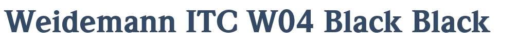 Weidemann ITC W04 Black