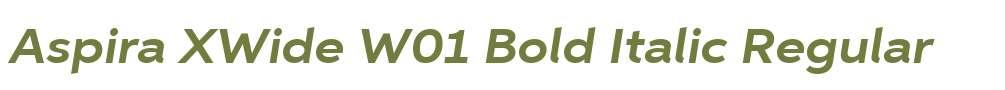 Aspira XWide W01 Bold Italic