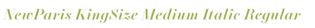 NewParis KingSize Medium Italic