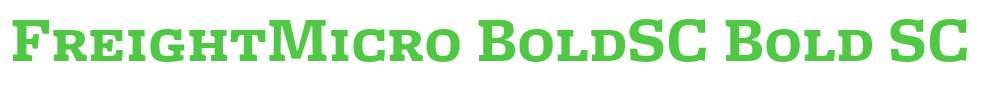 FreightMicro BoldSC