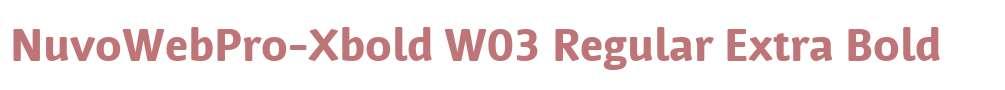 NuvoWebPro-Xbold W03 Regular