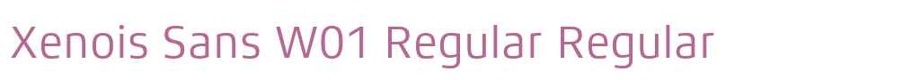 Xenois Sans W01 Regular