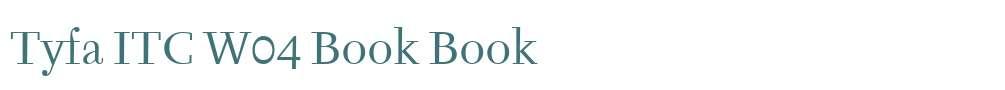 Tyfa ITC W04 Book