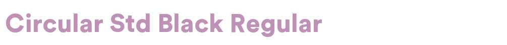 Circular Std Fonts Free Download - OnlineWebFonts COM