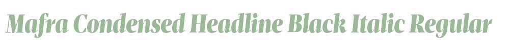 Mafra Condensed Headline Black Italic
