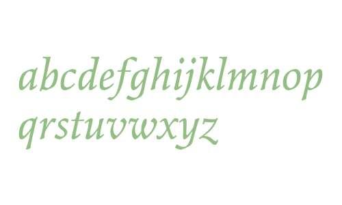 Elysium Std Book Italic