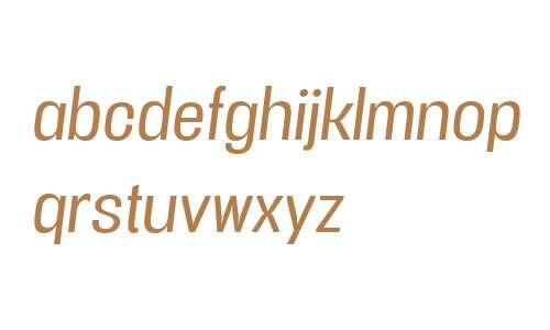 Vacer Sans W00 Book Italic