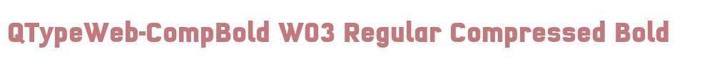 QTypeWeb-CompBold W03 Regular